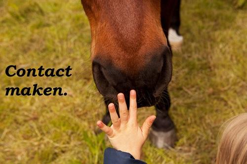 Contact-maken